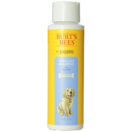 Tearless Dog Shampoo (Burts bees puppy tearless shampoo, 16-oz bottle )