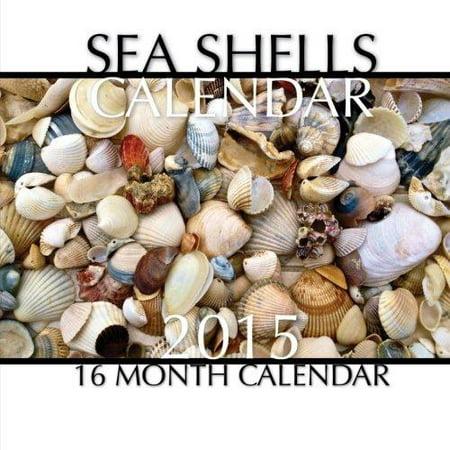 Sea Shells Calendar 2015  16 Month Calendar