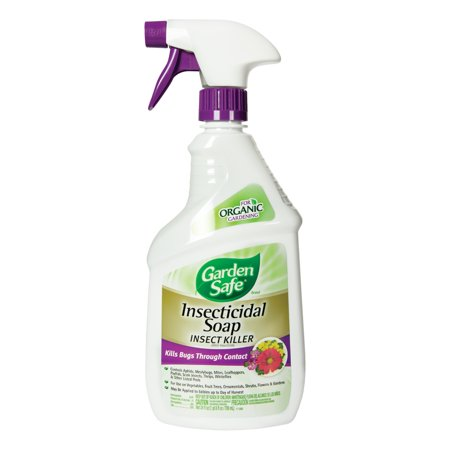Garden Safe Insecticidal Soap Insect Killer Ready-to-Use, 24 oz