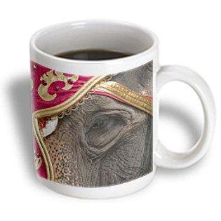 3dRose Wisconsin, Elephants at Great CIrcus Parade - US50 MDE0078 - Michael DeFreitas, Ceramic Mug, 15-ounce