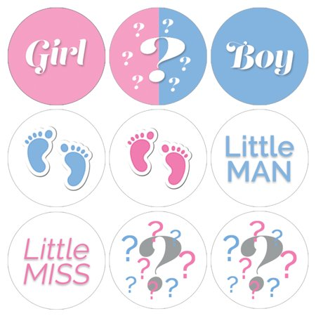 Gender Reveal Party Stickers, 216 count - Boy or Girl Baby Decorations He or She Pink and Blue Party Supplies](Gender Reveal Party Decorations)