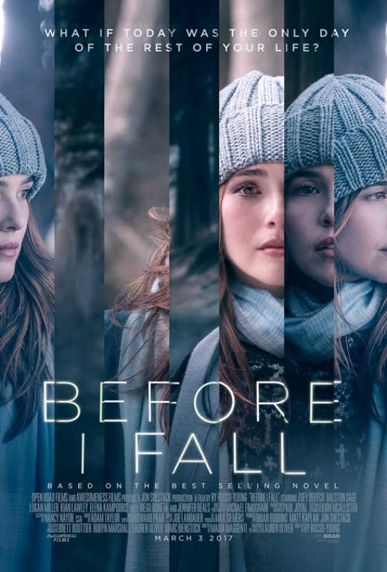 Before I Fall Movie Poster (27 x 40) by Pop Culture Graphics