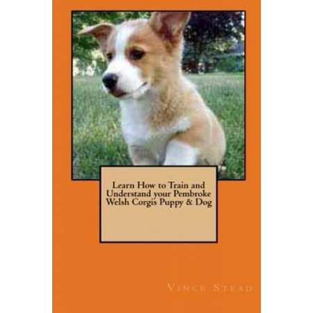 Learn How to Train and Understand Your Pembroke Welsh Corgis Puppy & Dog