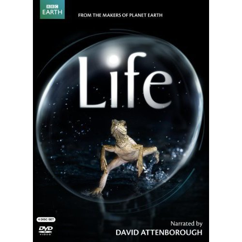 LIFE (NARRATED BY DAVID ATTENBOROUGH) DVD (4 DISC/ENG-SP-FR SUB)