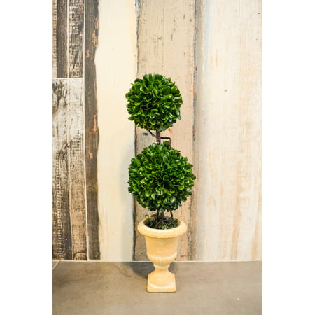Admired By Nature Faux Preserved Artificial Boxwood Topiary Plant Tabletop With Double Balls In Pot, 18