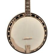 Recording King - RK-R36 The Madison 5-String Resonator Banjo - Gloss Mahogany Finish