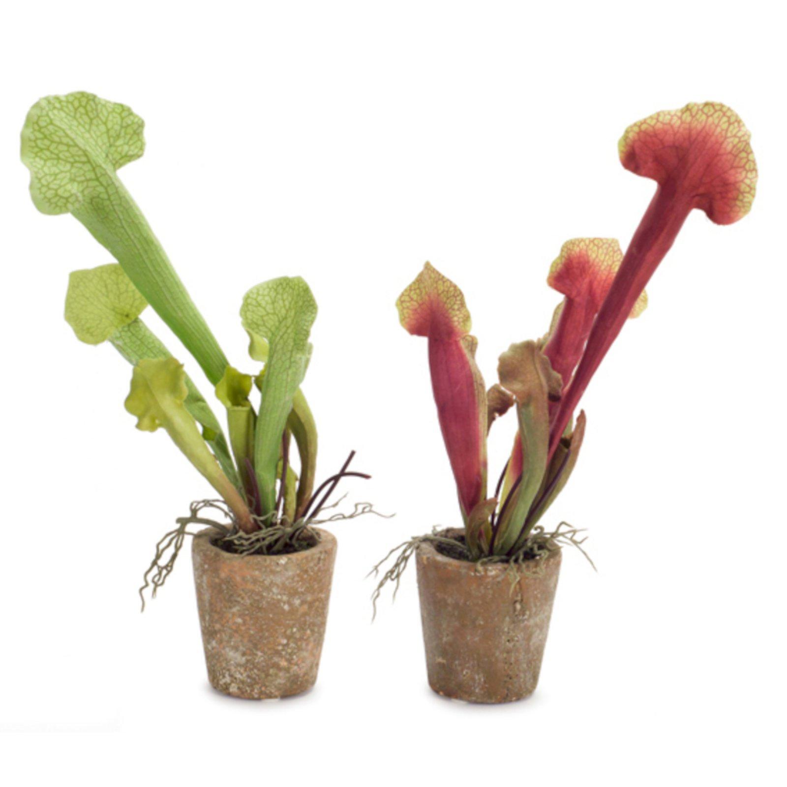 Melrose International Potted Cobra Lily Silk Plant - Set of 6