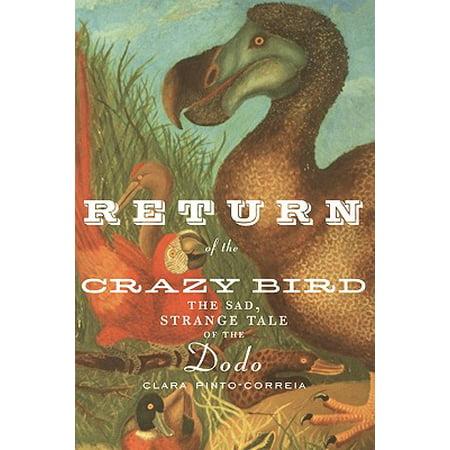 Crazy Bird (Return of the Crazy Bird : The Sad, Strange Tale of the)