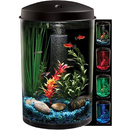 Hawkeye 3 gallon 360 view aquarium kit with led lighting for Filtre aquarium rond
