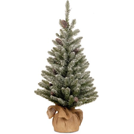 National Tree Co Snowy Concolor Fir 3 Green Artificial