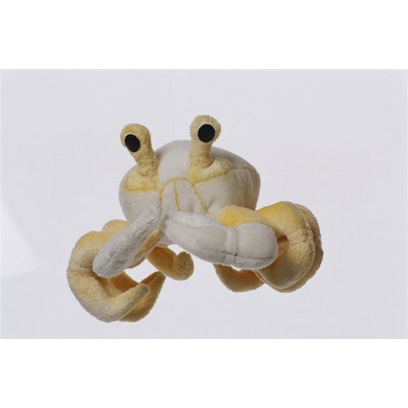 Ghost Crab - Cabin Critters Stuffed Animal -  Sea Life Collection