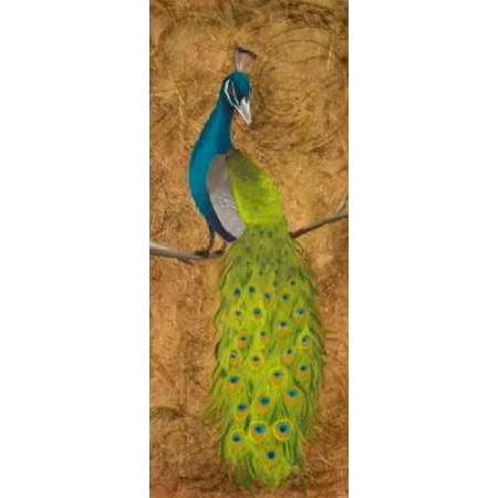 Peacocks II Canvas Art - Josefina (10 x 20)
