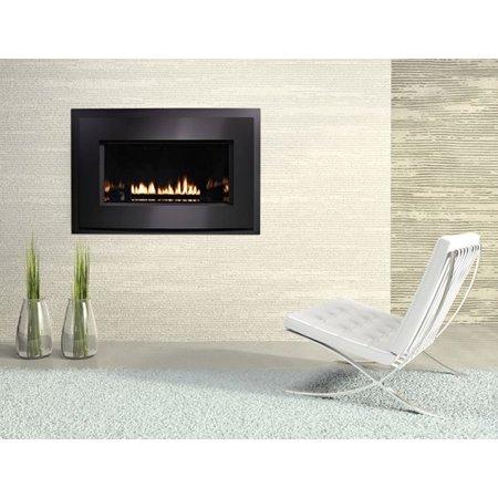Loft Series DV MED MV Fireplace, Metal Frame & SS Front, LP