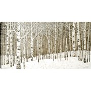 Hobbitholeco. ''Birch Trees Oil''  by Tina O Painting Print on Canvas