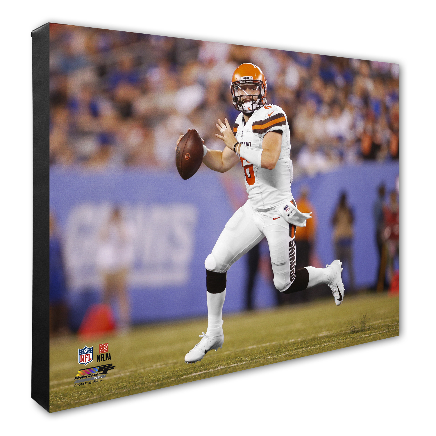 Baker Mayfield Cleveland Browns 16'' x 20'' Player Profile Canvas - No Size