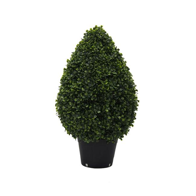 UV Boxwood Teardrop Shaped Everyday Topiary in Pot - 24 in.