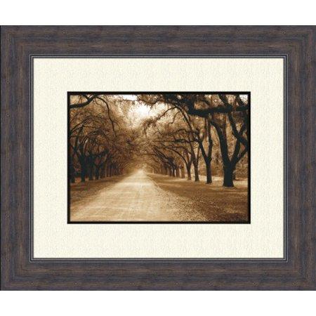 Image of PTM Images Savannah Oaks B Framed Photographic Print