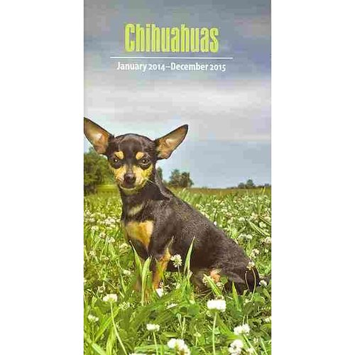 Chihuahuas January 2014-December 2015 Calendar