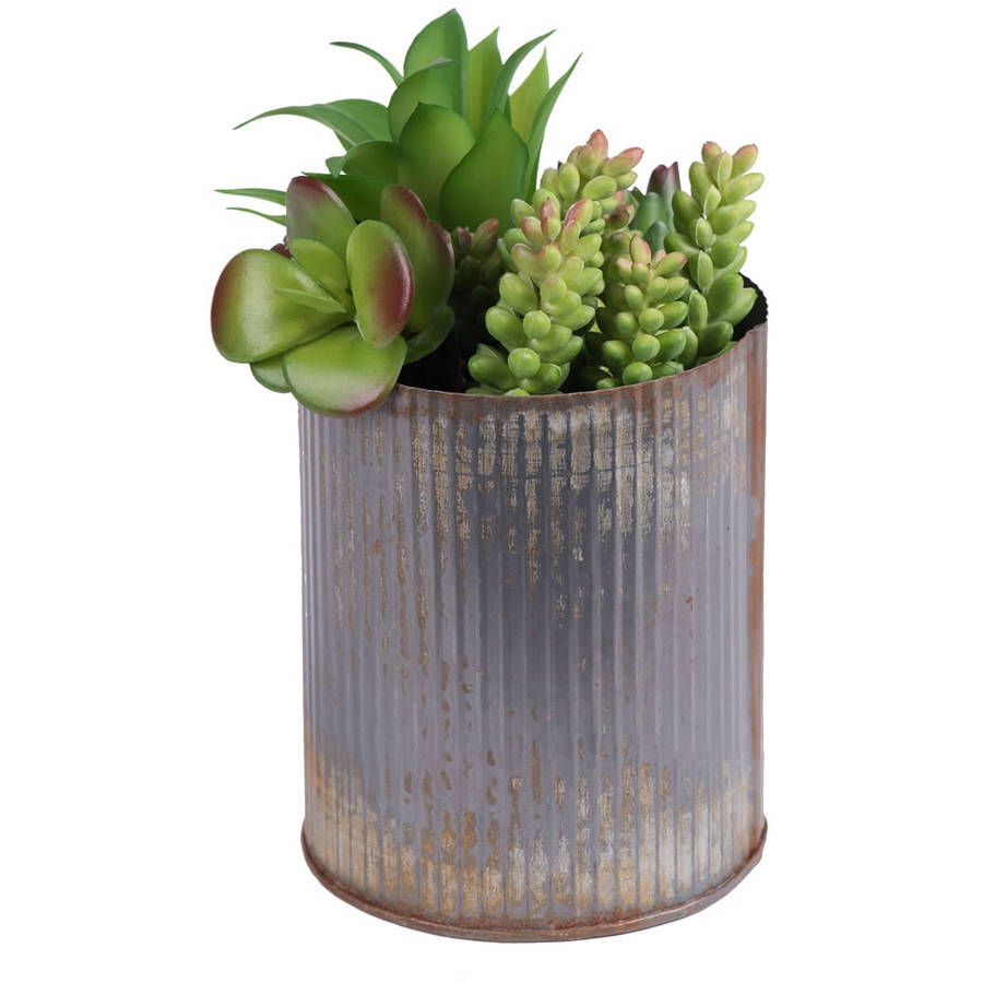 "Vickerman 9"" Rustic Tin Container with a Variety of Succulents Plants"