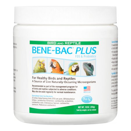 - PetAg Bene-Bac Plus FOS & Probiotics Sensitive Digestion Bird & Reptile Supplement, 10 oz.