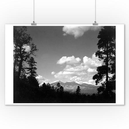 Flagstaff, Arizona - View of San Francisco Peaks - Vintage Photograph (9x12 Art Print, Wall Decor Travel Poster) ()