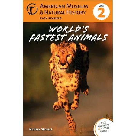 World's Fastest Animals : (level 2)