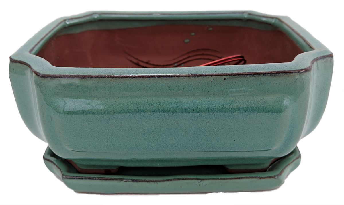 "Pro Bonsai Pot Saucer -Pre-Wired Screened AquaFancyRect 8.5"" x 6.5"" x 3.5"" by"