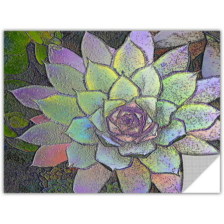 Dean Uhlinger Arco Iris Suculento  Art Appeelz Removable Wall Art Graphic