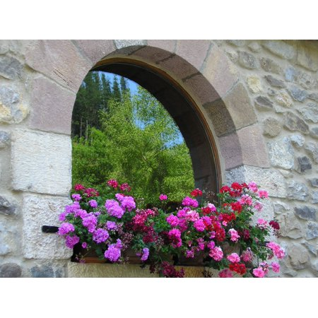 LAMINATED POSTER Colors Window Flowers Warmth Flowers In The Window Poster Print 24 x