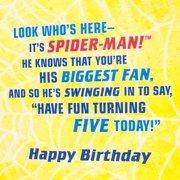 Hallmark 5th Birthday Greeting Card Spider Man Door Hanger Image 3 Of 6
