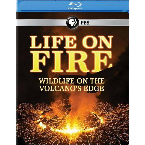 Life On Fire: Wildlife On The Volcano's Edge (Blu-ray)