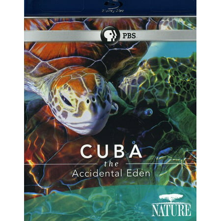 Image of Cuba: The Accidental Eden (Blu-ray)