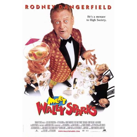 Meet Wally Sparks POSTER Movie (27x40) (Sparks Halloween)