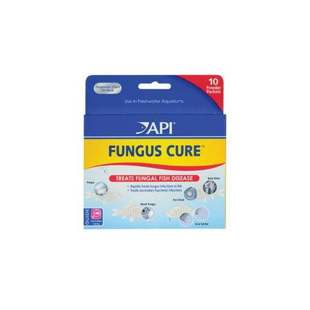API Fungus Cure Powder | Walmart Canada