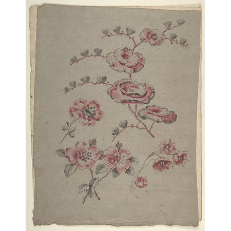 Pink Flower Pattern Poster Print by Anonymous French 19th century (18 x 24)