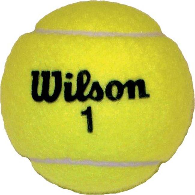 Olympia Sports BA457P Wilson Championship Game Tennis Balls by