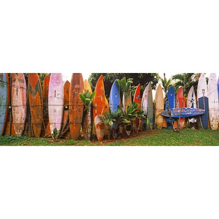 Arranged Surfboards, Maui, Hawaii, USA Print Wall