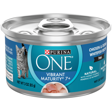 Purina ONE Grain Free, Natural Senior Pate Wet Cat Food ...