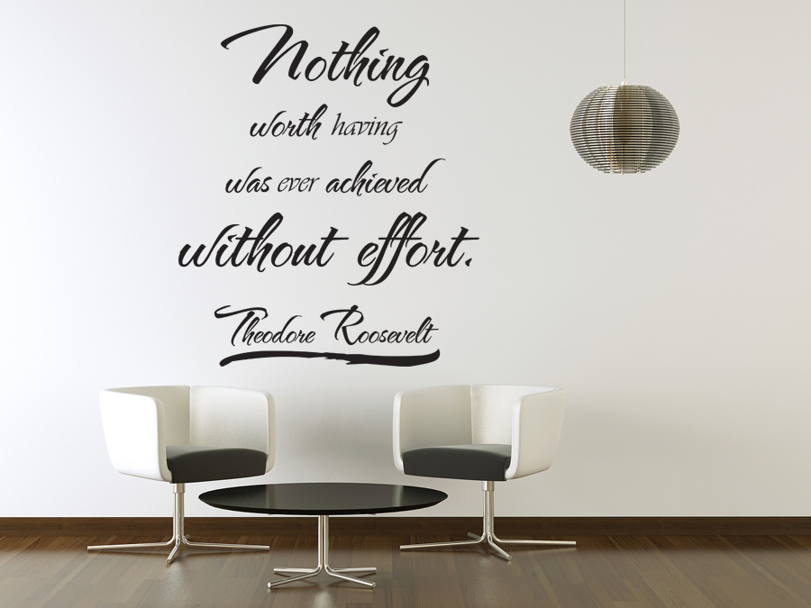 Vinyl Wall Art Theodore Roosevelt Quote Sticker Decal Decor Inspirational  J14