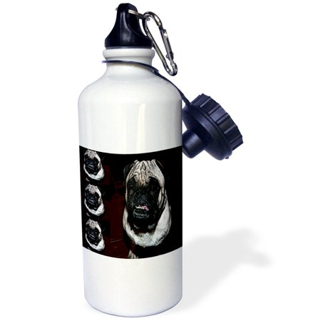3dRose Tan and Black Pet Pug Four Times on Page Close Up to Create Pattern , Sports Water Bottle, (Createx Bottles)