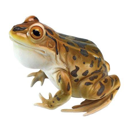 Design Toscano Lester, the Leopard Frog Statue ()