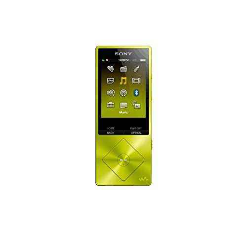 Sony Walkman NW-A26HN - digital player
