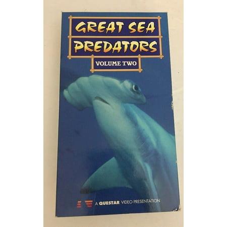 Great Predators of the Sea