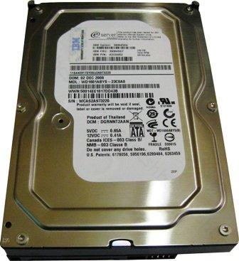 IBM 39M4522 160GB 7200 RPM SATA-II Hot-Swap 3.5 Inch Hard Drive.