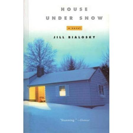 House Under Snow - eBook