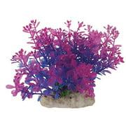 Elive Llc.-- Pink/purple 5-6 Inch