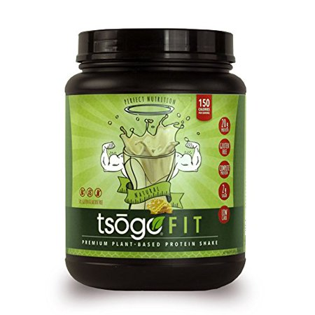 Sox Fiber - Tsogo Fit Protein Powder w/ 20 Grams of Plant Based Protein/Serving, Honey Flavor, Soy, Gluten and Dairy Free, High Fiber, Low Carb, Only 150 Calories/Serving (1 Tub, 20 Servings, 26.8oz | 760g)