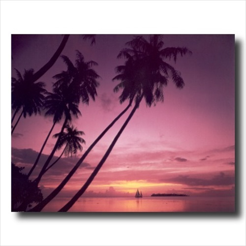 Hawaiian Ocean Beach Palm Tree Wall Picture Art Print