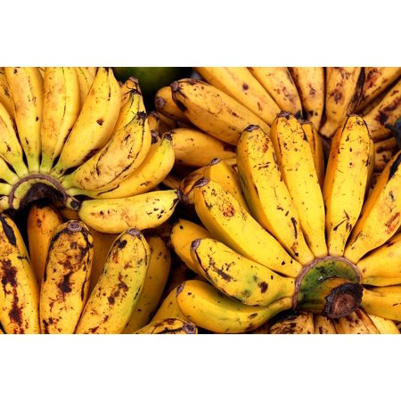 10 Assortment - Canvas Print Bananas Display Fruits Colorful Assortment Stretched Canvas 10 x 14