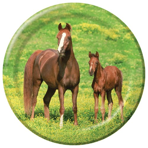 Creative Converting Wild Horses 8 Count Paper Dinner Plates